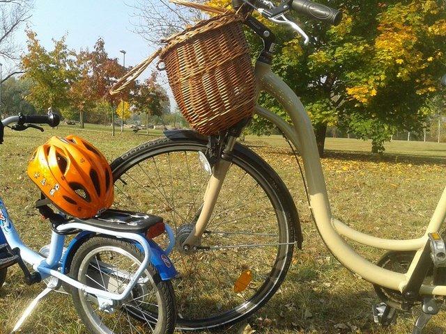 Transport przyjazny środowisku – poruszanie się w dużym mieście a minimalizm