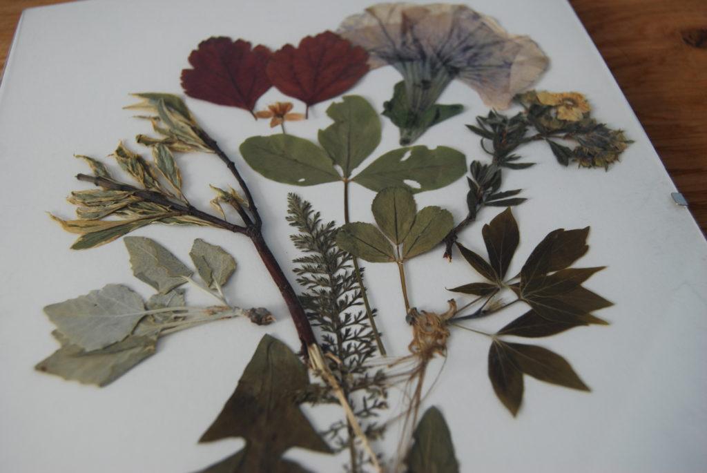 Ozdoba w styu slow life - obraz z suszonych roślin