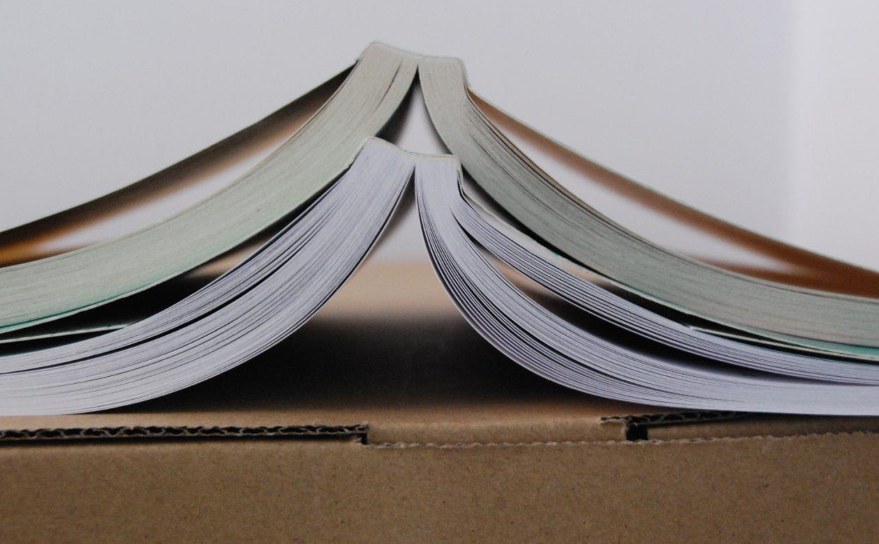 Minimalistyczna rewolucja w biblioteczce – część I: Ogarnij księgozbiór